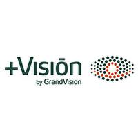 +VISION